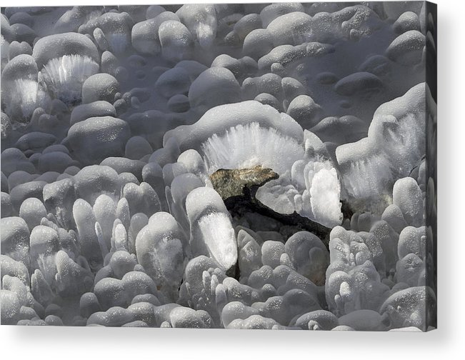 Ice Acrylic Print featuring the photograph Mendenhall Lake Ice Abstract by Cathy Mahnke