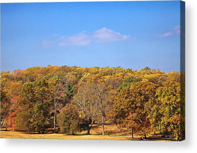 Autumn Acrylic Print featuring the digital art Mixed Fall by Leeon Photo