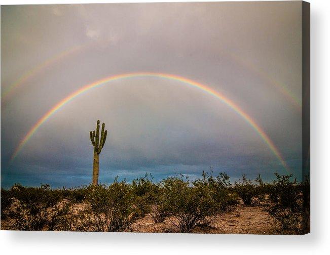 Sonoran Desert Acrylic Print featuring the photograph Monsoon Double Rainbow by Erica Hanks