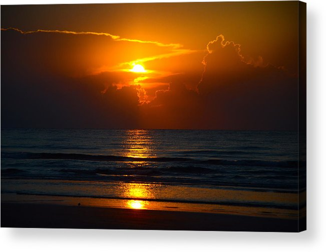 Michael Anthony Acrylic Print featuring the photograph Morning Highlights by Michael Anthony