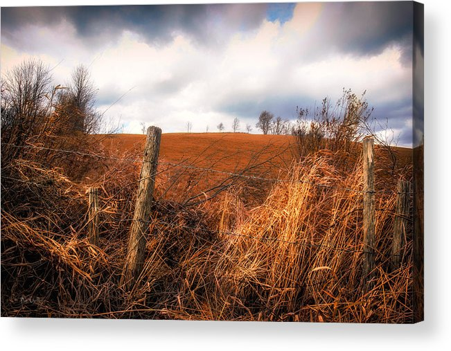 Landscape Acrylic Print featuring the photograph Mountain Pasture by Bob Orsillo
