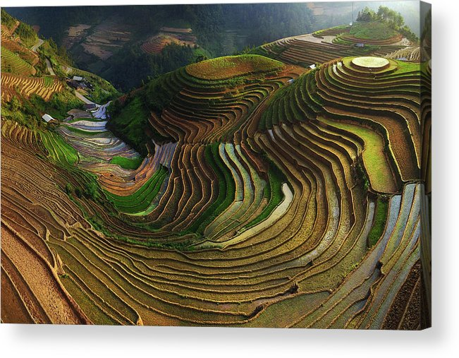 Terrace Acrylic Print featuring the photograph Mu Cang Chai - Vietnam by ??o T?n Ph?t