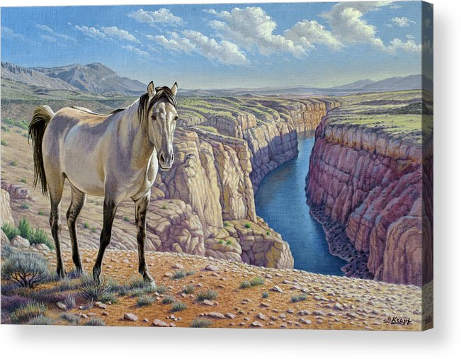 Wildlife Acrylic Print featuring the painting Mustang At Bighorn Canyon by Paul Krapf