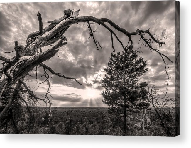 Clouds Acrylic Print featuring the photograph Natures Arch by Debra and Dave Vanderlaan