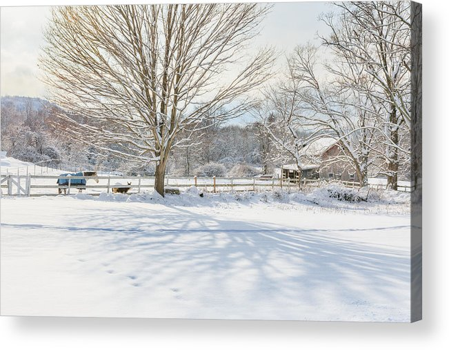 New England Winter Acrylic Print featuring the photograph New England Winter by Bill Wakeley