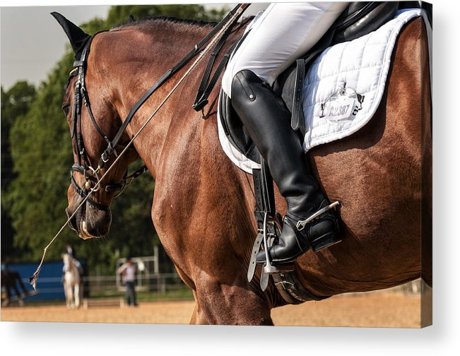 Dressage Competiton Acrylic Print featuring the photograph No. A2387 by Robert Krajnc