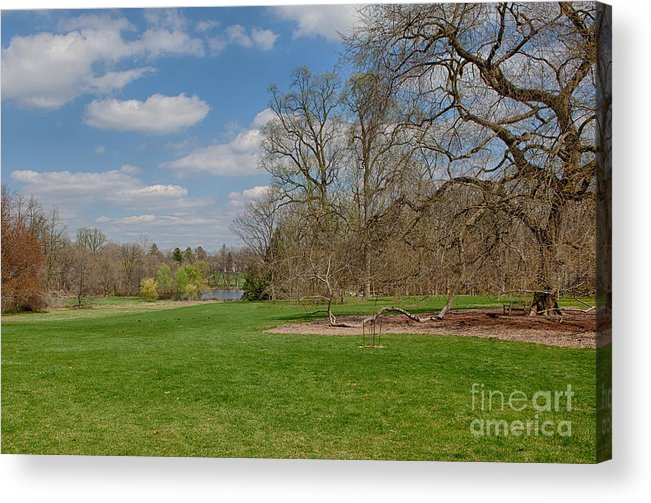 Elm Acrylic Print featuring the photograph Old Elm Haverford College by Kay Pickens
