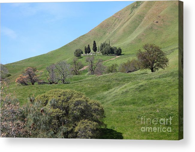 Bayarea Acrylic Print featuring the photograph Old Rose Hill Cemetery Atop  The Rolling Hills Landscape Of - Old Rose Hill Cemetery Atop The Rolling Hills Landscape Of The Black