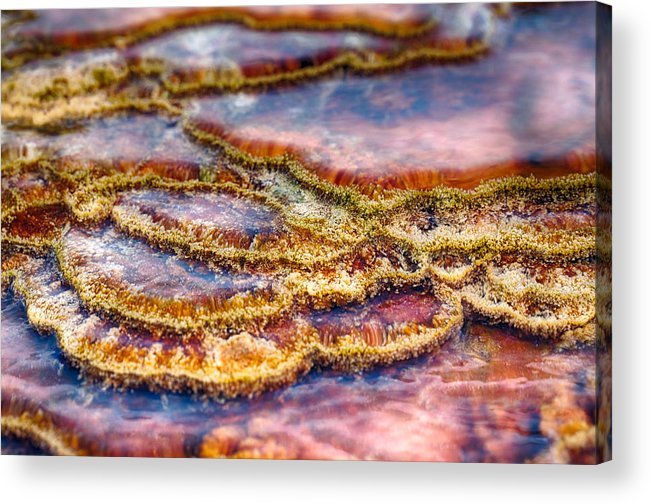 Hot Springs Acrylic Print featuring the photograph Pancakes Hot Springs by Scott Campbell