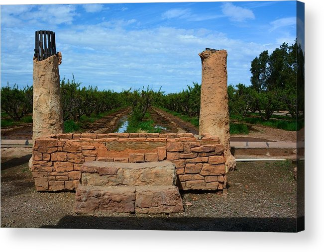 Farm Acrylic Print featuring the photograph Peach Orchard And Ruins by Richard Jenkins