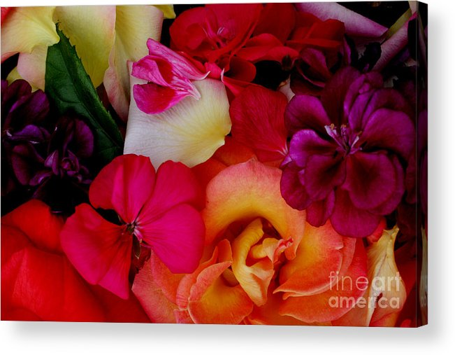 Photography Acrylic Print featuring the photograph Petal River by Jeanette French
