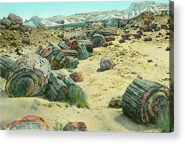Vintage Acrylic Print featuring the painting Petrified Forest by Alan Paul