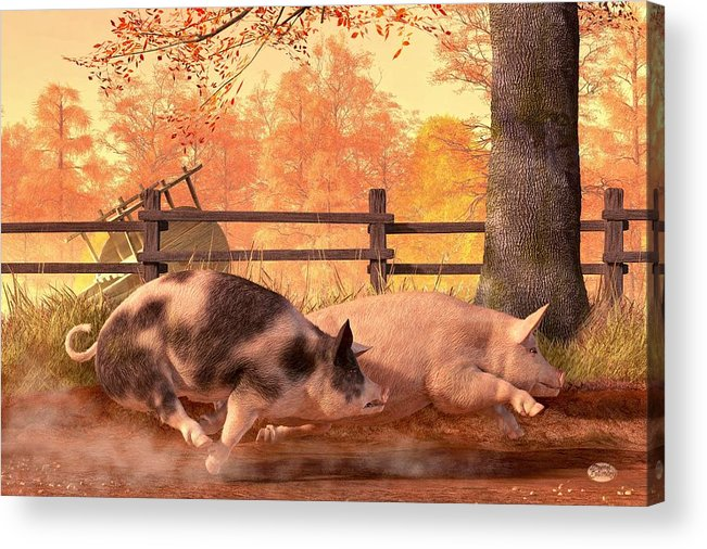 Pig Race Acrylic Print featuring the digital art Pig Race by Daniel Eskridge