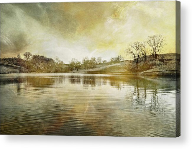 Pond Acrylic Print featuring the photograph Pond In Spring by Brenda Hackett