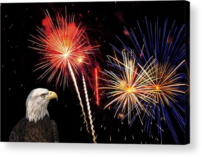Eagle Acrylic Print featuring the photograph Proud And Free 3 by Penny Lisowski
