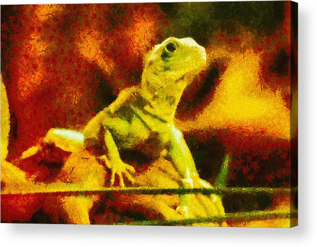 Lizard Acrylic Print featuring the painting Queen Of The Reptiles by Ayse Deniz