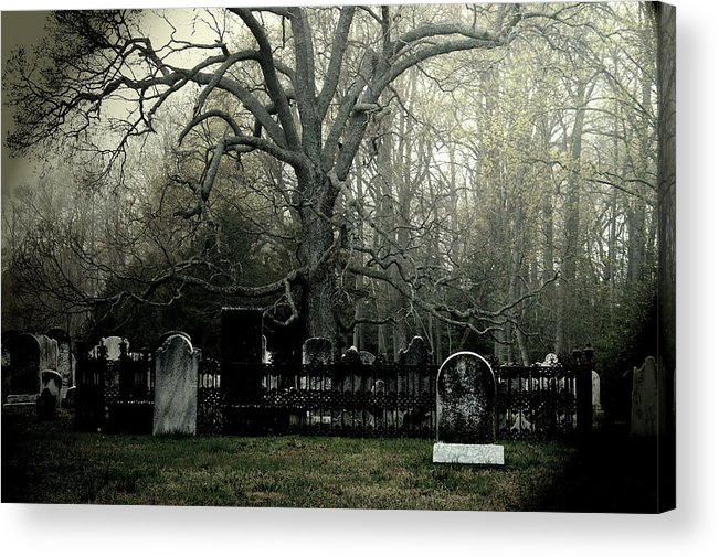 Tree Acrylic Print featuring the photograph Raw by Kenny Noddin