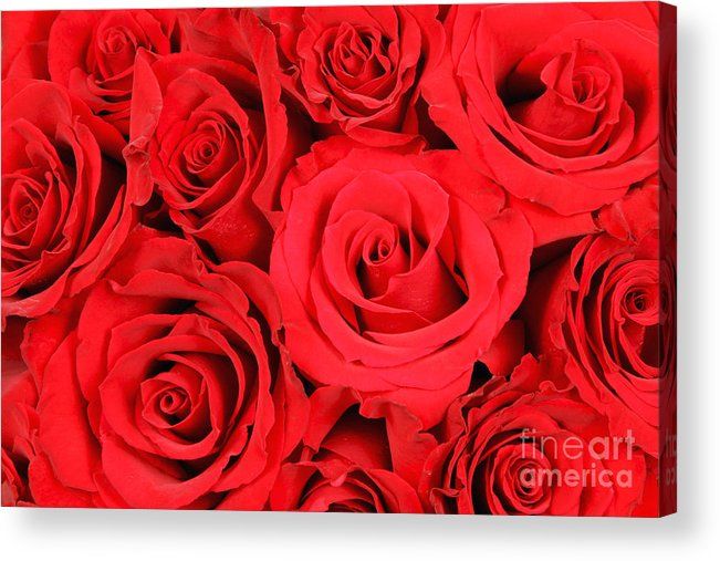 Flora Acrylic Print featuring the photograph Red Roses by David Davis