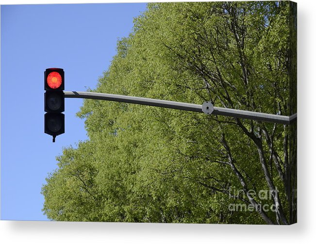 Guidance Acrylic Print featuring the photograph Red Traffic Light By Trees by Sami Sarkis