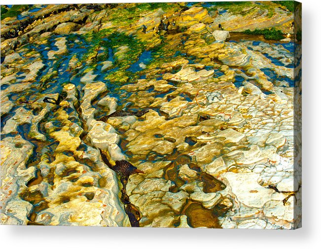 Abstract Nature Acrylic Print featuring the photograph Ripples In Time by Artist and Photographer Laura Wrede