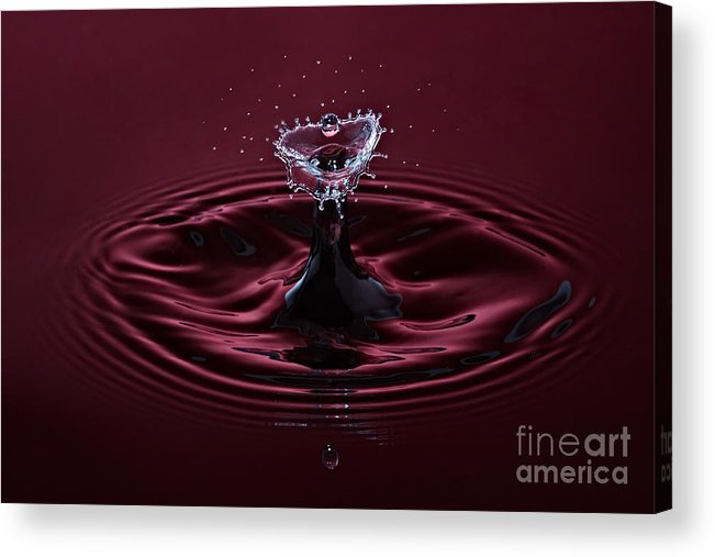 Water Acrylic Print featuring the photograph Rubies And Diamonds by Susan Candelario