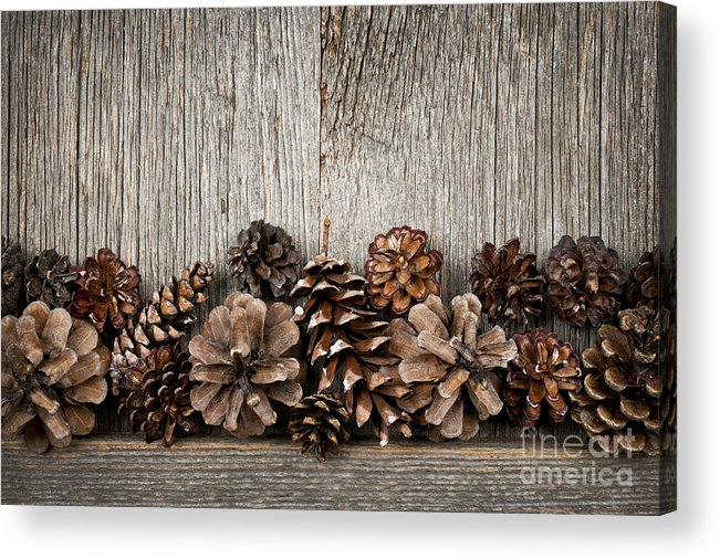 Wood Acrylic Print featuring the photograph Rustic Wood With Pine Cones by Elena Elisseeva