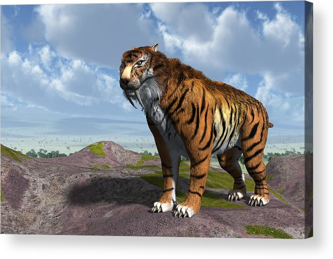Sabertooth Acrylic Print Featuring The Digital Art Saber Tooth Tiger By Nelson Nieves