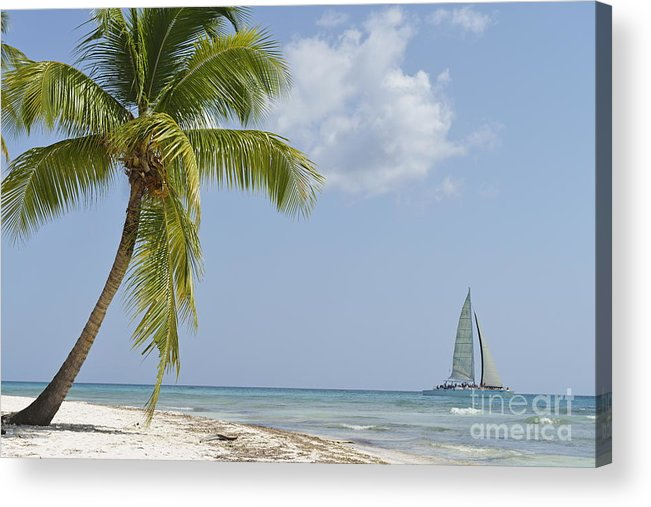 Getting Away From It All Acrylic Print featuring the photograph Sailboat Passing By Tropical Beach by Sami Sarkis