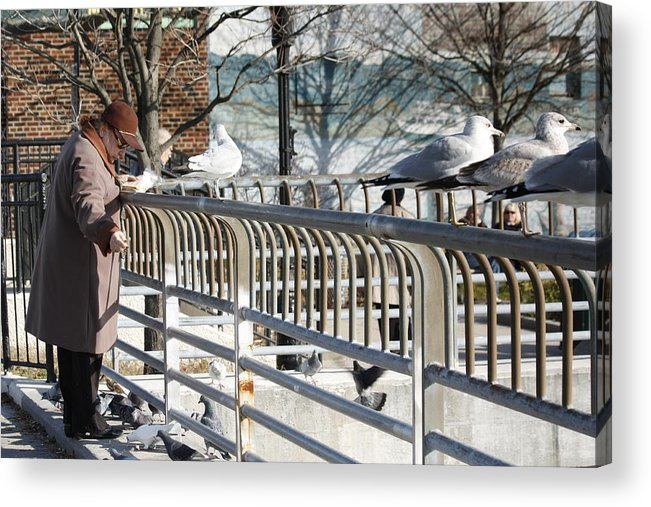 People Acrylic Print featuring the photograph Seagull Lady In The Afternoon by Ann Murphy