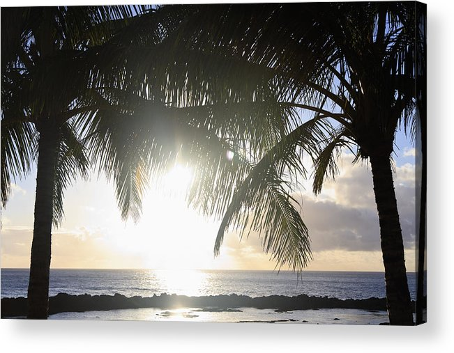 Background Acrylic Print featuring the photograph Sharks Cove Sunset by Brandon Tabiolo