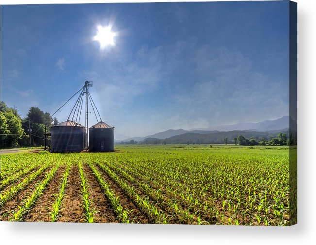 Andrews Acrylic Print featuring the photograph Silos by Debra and Dave Vanderlaan