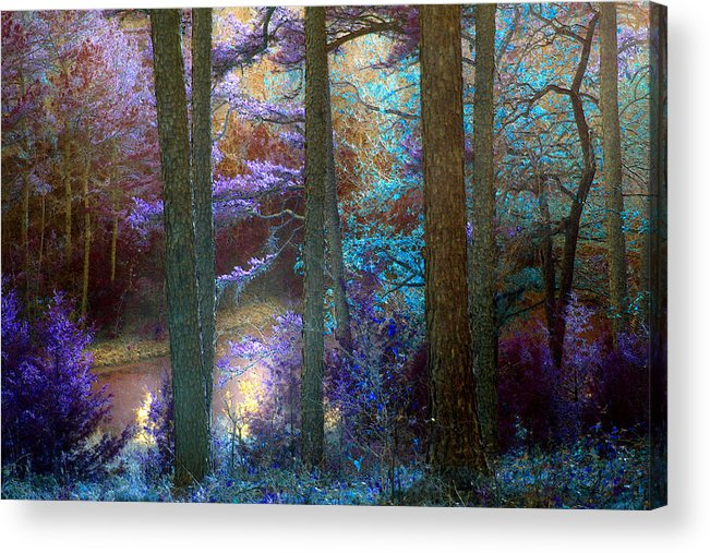 Landscape Acrylic Print featuring the photograph Sleep Walking by Nina Fosdick