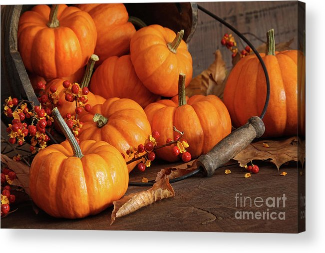 Autumn Acrylic Print featuring the photograph Small Pumpkins With Wood Bucket by Sandra Cunningham