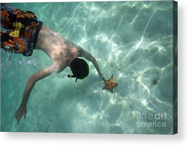 People Acrylic Print featuring the photograph Snorkeller Touching Starfish On Seabed by Sami Sarkis