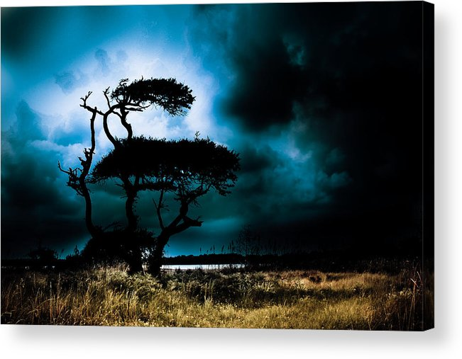 Live Oak Acrylic Print featuring the photograph Something Wicked This Way Comes by Shane Holsclaw