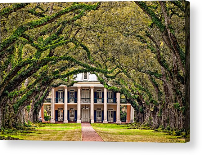 Oak Alley Plantation Acrylic Print featuring the photograph Southern Class by Steve Harrington