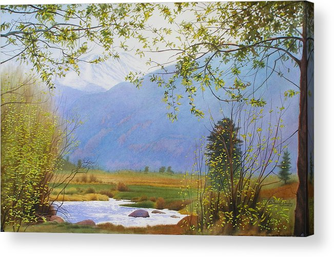Watercolor Acrylic Print featuring the painting Springtime Moraine Park by Daniel Dayley