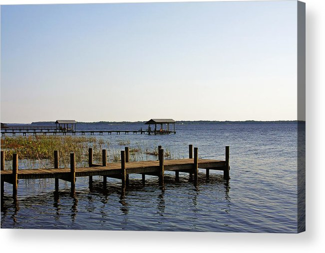 St Acrylic Print featuring the photograph St Johns River Florida - Walk This Way by Christine Till
