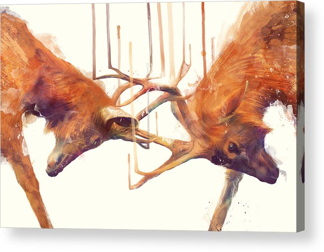 Stags Acrylic Print featuring the painting Stags // Strong by Amy Hamilton