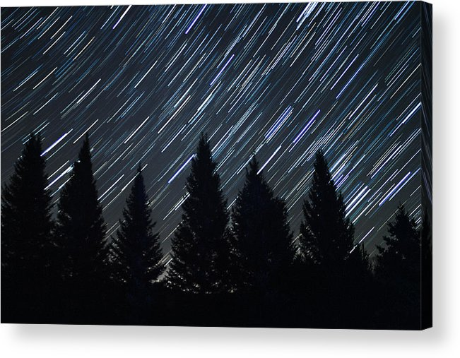 Star Trails Acrylic Print featuring the photograph Star Trails And Pine Trees by Penny Meyers