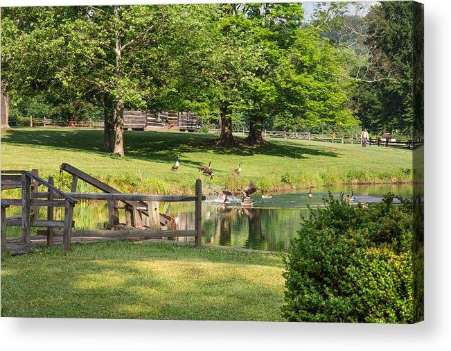 Jackson's Mill Acrylic Print featuring the photograph Summer Dreaming by Mary Almond