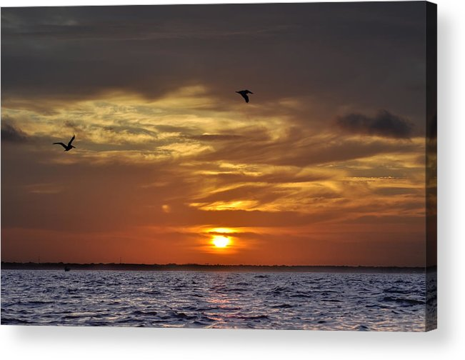 Sunrise Acrylic Print featuring the photograph Sunrise On Tampa Bay by Bill Cannon