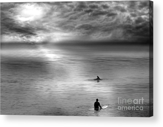 Dolphins Acrylic Print featuring the photograph Surfing With The Dolphin by Artist and Photographer Laura Wrede