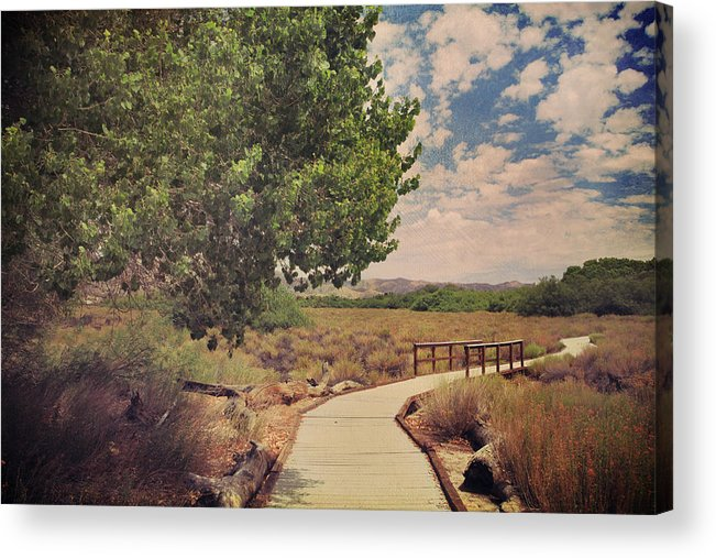 Big Morongo Canyon Preserve Acrylic Print featuring the photograph That Helping Hand by Laurie Search