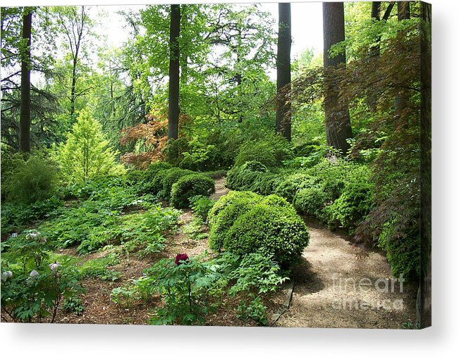 Paths Acrylic Print featuring the photograph Asian Paths No. 15 by Walter Oliver Neal