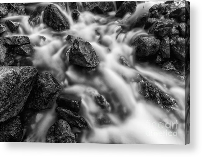 B&w Acrylic Print featuring the photograph The Center Of It All Bw by Mitch Johanson