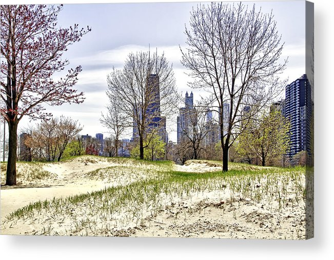 Chicago Photographs Acrylic Print featuring the photograph The Chicago Skyline Day-002 by David Allen Pierson
