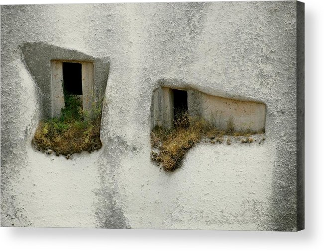 Look Acrylic Print featuring the photograph The Look by Apurva Madia