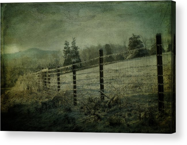 Snow Acrylic Print featuring the photograph The Morning After by Kathy Jennings