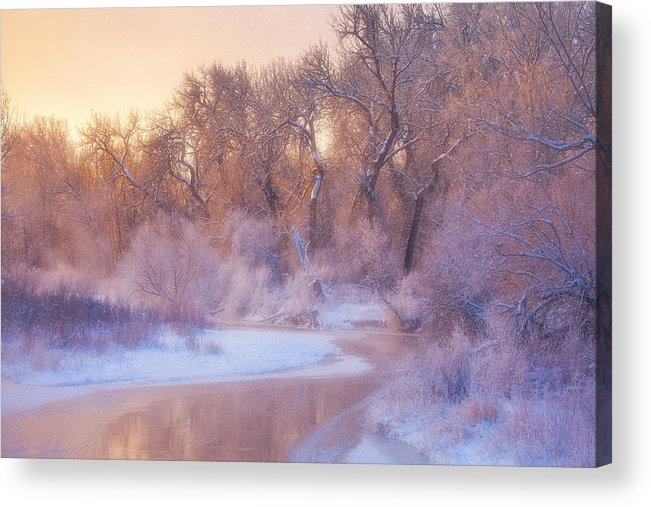 Ice Acrylic Print featuring the photograph The Warmth Of Winter by Darren White